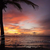 Sunset Photo ocean photo palm tree sunset purple & by ImagesByCW