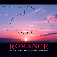 Romance Demotivator - The Original Demotivational Posters
