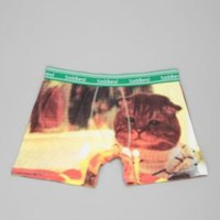 UrbanOutfitters.com > Toddland Kitty Birthday Boxer Brief