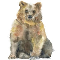 Brown Bear Watercolor Painting Giclee Print Fine Art Print 8 x 10