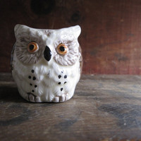 Sweet Woodland Owl Toothpick Holder - Made in Japan