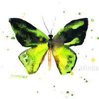 Watercolor Painting Butterfly Fine Art Giclee Print - Bright Green