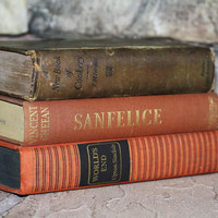 Vintage Book Collection 3  Interior Design by jaysworld on Etsy