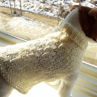 Dog Sweater Hand Knit Ivory Medium by jenya2 on Etsy