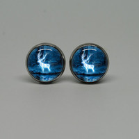 Silver Stud Post Earrings with Harry Potter Patronus