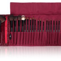 SHANY Cosmetics NY Collection Pro Brush Kit, 13 Ounce (22 Piece Mix Natural or Synthetic with Purple Faux Crocodile Case): Beauty