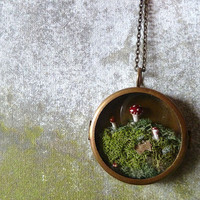 Terrarium Moss Miniature Mushroom Woodland Locket Necklace.. The Phineas Alazar Grubb Saga Continues