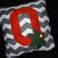 Ohio State Buckeye pillow