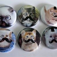 A set of 6 cats with mustaches button magnet by Getagripmagnets