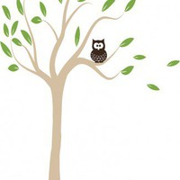 Cute Owl in Tree Branch
