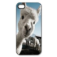 Amazon.com: Protective Lovely Llama Iphone 5 Case Well-designed Hard Case Cover Protector For iPhone 5: Cell Phones & Accessories