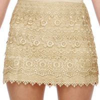 Gorgeous Beige Lace Skirt