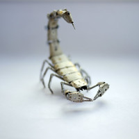 Mechanical Scorpion No 5 by A Mechanical Mind Recycled Watch Parts Watch Faces Dials Stems Unique Clockwork Arachnid Sculpture w/ Dome