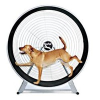Gopet- Treadwheel For Large Dogs