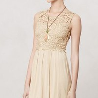 Honeyed Lattice Dress - Anthropologie.com