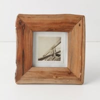 Repurposed Frame, Small