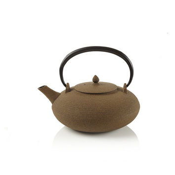 Orbits tatara cast iron teapot at teavana from - Teavana teapots ...