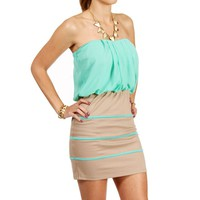 Taupe/Mint Contrast Mini Dress