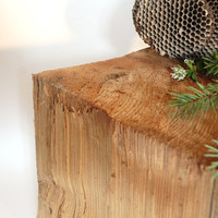 split cedar log from the Alsea river drift by paperanji on Etsy