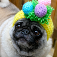 Yo Bunny, Where Did You Hide Them Eggs / Dog Hat / Made to Order