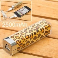 2500mah Power Charger Battery Bank for Iphone 4/4s and Camera, Various Cell Phones and Digital Devices: Cell Phones & Accessories