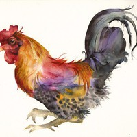 Rooster in Magenta and Gold archival print by amberalexander