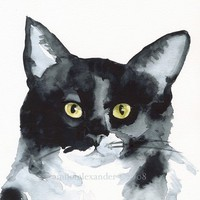 The Stare- Cat Art, Archival print
