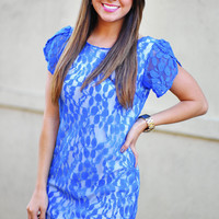 Laced With Luxury Dress: Sapphire | Hope&#x27;s