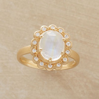 MAGNUM OPUS RING