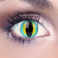 Aqua Contact Lenses | Aqua Dragon Contact Lenses