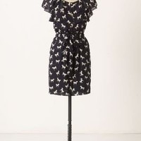 Andalusian Horse Dress-Anthropologie.com
