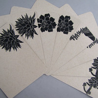 Succulent Note Cards, Set of 8 Flat Cards with Envelopes