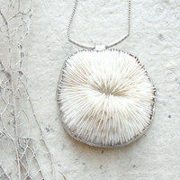 Sea Treasure Collection Soldered Mushroom Coral by StaroftheEast
