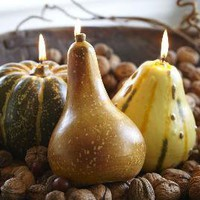 Gourd Candles | Pottery Barn