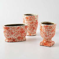 Anthropologie - Coral-Crackle Herb Pot