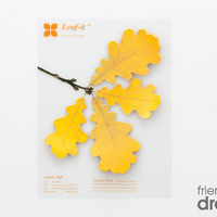 Leaf it - notes | Droog Accessories | by Sangwoo Nam