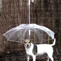 Pet Umbrella (Dog Umbrella) Keeps your Pet Dry and Comfortable in Rain - Novelty Gag Gift: Pet Supplies