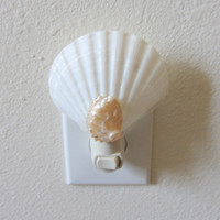 Beach Decor - Scallop and Pearl Abalone Shell Night Light