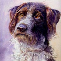 Watercolor Dog Portrait Step-by-Step Tutorial