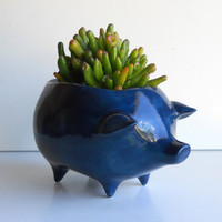 Ceramic Pig Planter Vintage Design in Navy