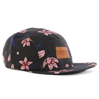 Grand Scheme Tropic Floral 5-Panel Cap - Black at Urban Industry