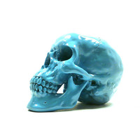 skull home decor, skulls, hipster style, anatomy, home decor, skull head, odd, creepy, skeleton, human head