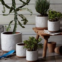 Patterned Pots
