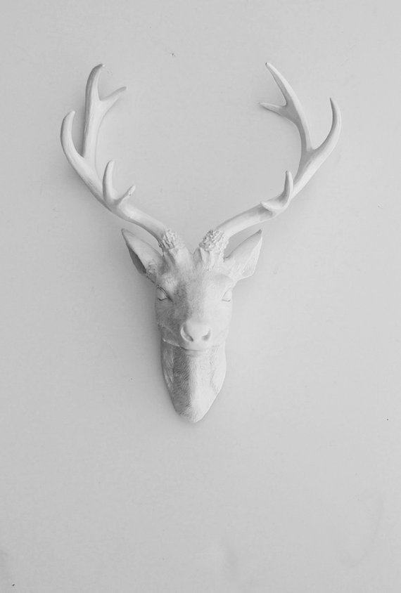 White faux taxidermy faux deer head from whitefauxtaxidermy