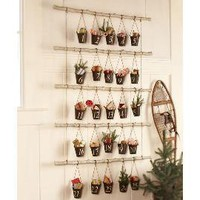 Bucket &amp; Branch Advent Calendar | Pottery Barn