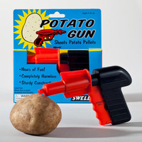 Toysmith Potato Gun | World Market
