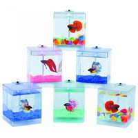 LED Aqua Box Fish Bowl - #U7853 | LampsPlus.com