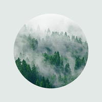 Landscape Photography Mountains Photograph Evergreen Trees Mysterious Fog Forest Mist Blue Green