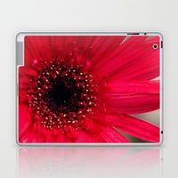 Red Gerber Daisy Laptop & iPad Skin by Erin Johnson
