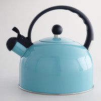 Enamel Tea Kettle, Aqua